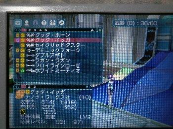 P1050149.JPG